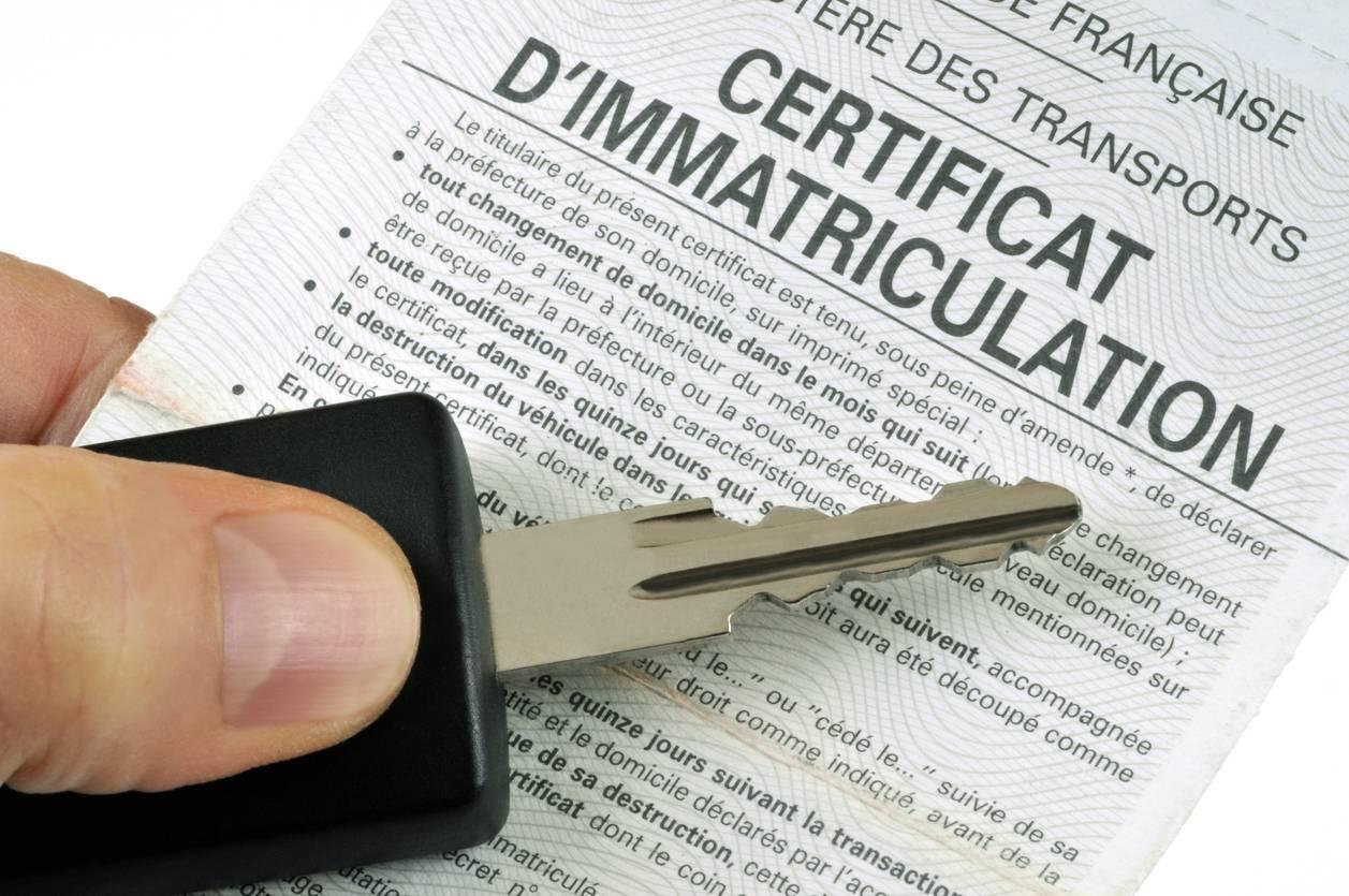 carte immatriculation